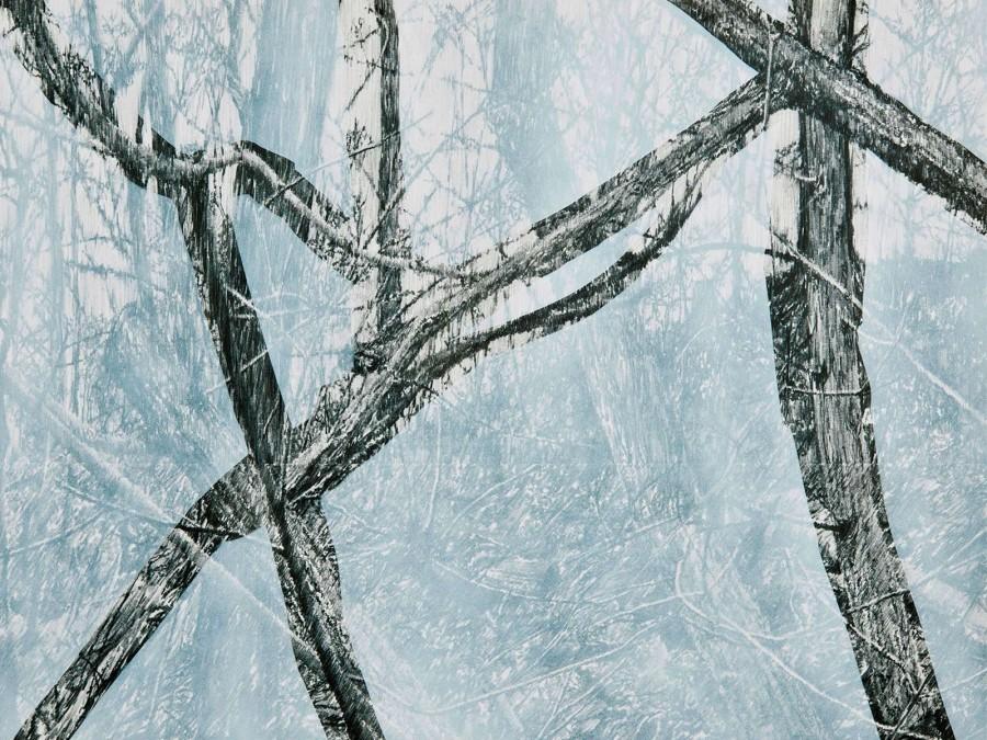 Kleine Waldrechnung, 2010