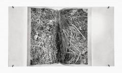 Philip Loersch – Faltung, 2012