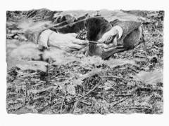 Philip Loersch – Waldstifte 2, 2012